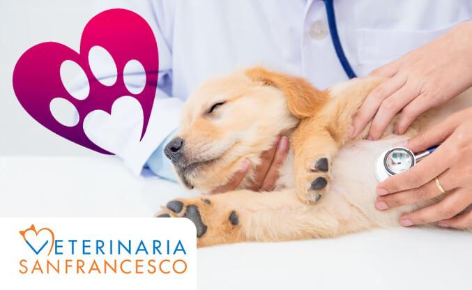 Malattia-cronica-della-valvola-mitrale_pre.jpg